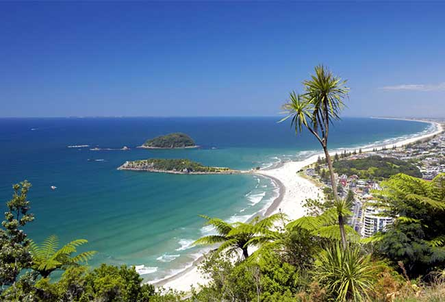 View from the top of Mt Maunganui